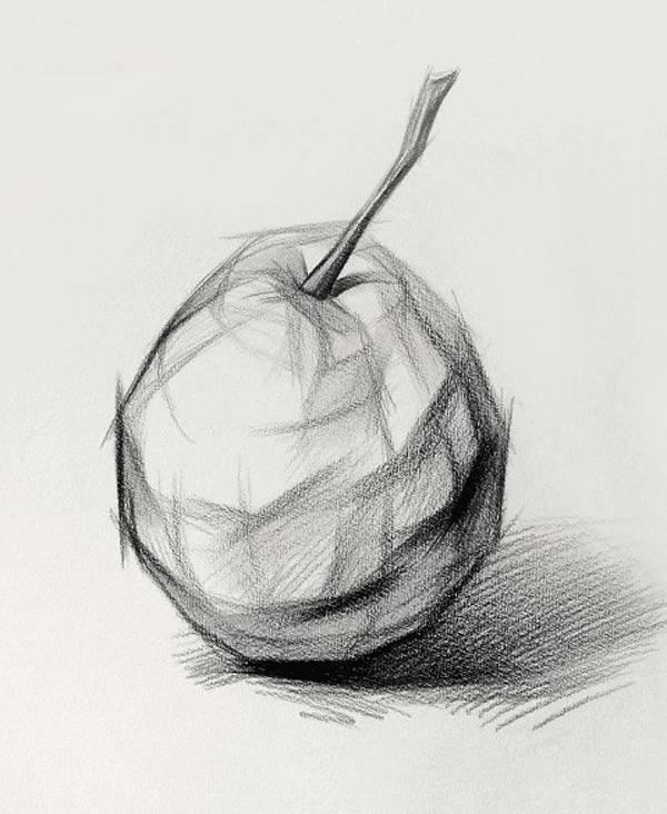 【素描干貨】素描靜物的10個作畫小技巧!建議收藏7