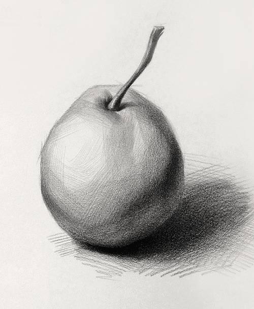 【素描干貨】素描靜物的10個作畫小技巧!建議收藏8