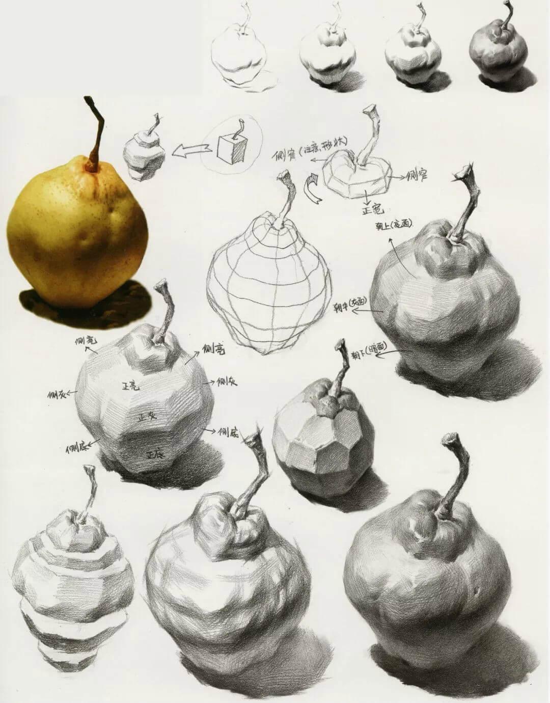 素描單體梨很好畫?分解看,更好畫!1
