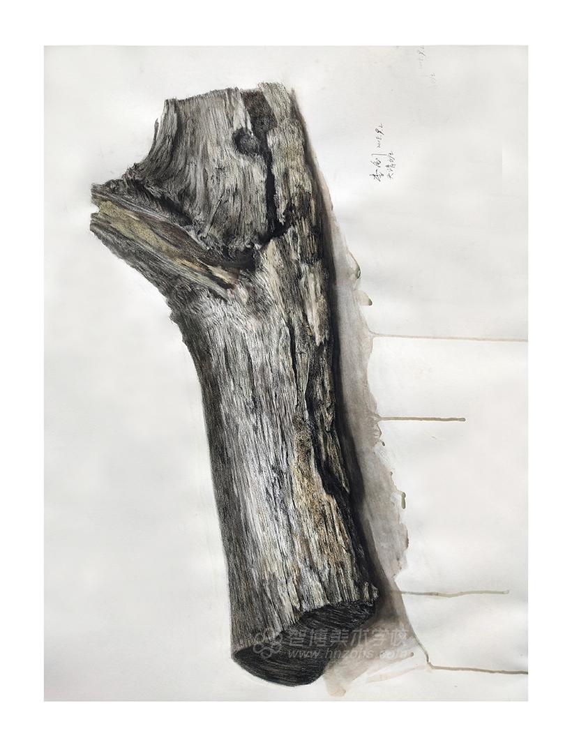 精微素描作品木头秸